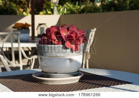 Red silk flowers in a clay pot on a brown placemat and table.