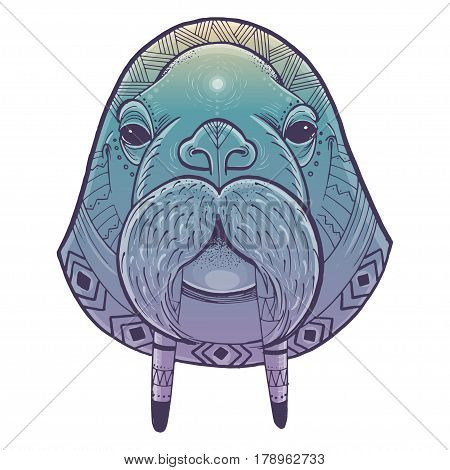 Vector illustration of walrus head. Vector poster with walrus in ornamental style.