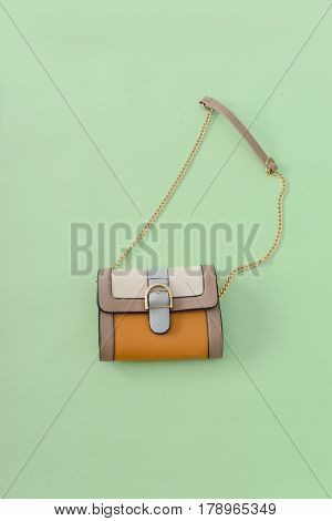 Women's handbag on green background