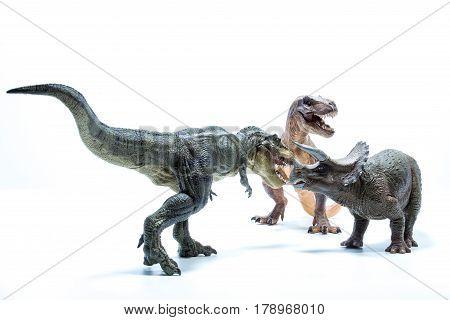 Two Dinosaur Tyrannosaurus Rex Attack A Triceratops - White Background