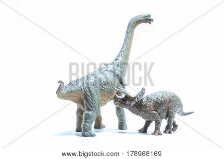 Triceratops Dinosaur Attacks A Green Brachiosaurus Altithorax