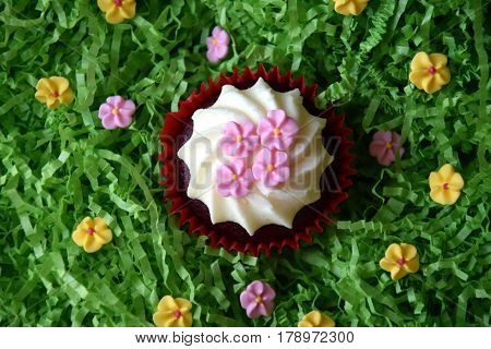 Muffins decorated with pink flowers on green background. Spring Mother's day Valentine's day concept. Homemade cupcake with whipped cream and pink spring flower on green grass background.