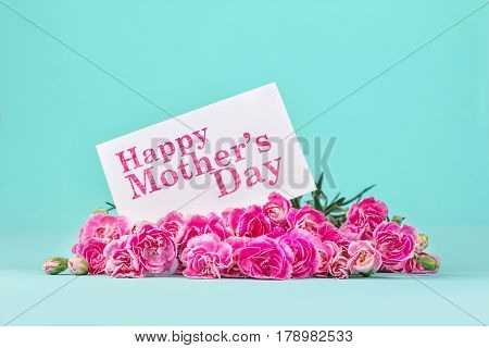 beautiful blooming of pink carnation flowers on with card and Happy Mother's day message mother's day concept