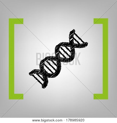 The DNA sign. Vector. Black scribble icon in citron brackets on grayish background.