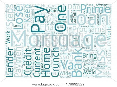 Save Your Home From The Credit Crunch text background word cloud concept