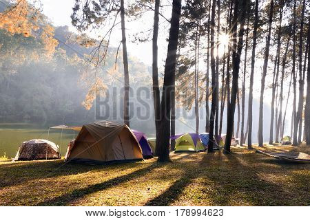 Tourist camp and  nature ,Vacation ,Holiday concept.