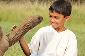 Outdoor on the lawn in sunshine a young smiling school boy looks into the eyes of a giant tortoise. poster