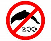 Detailed and colorful illustration of dolphins in zoo prohibited poster