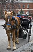 "A horse and carriage in ""old city"" Philadelphia outside of Independence Hall. poster"