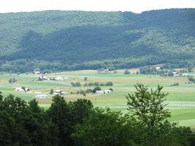Farmland In The Valley