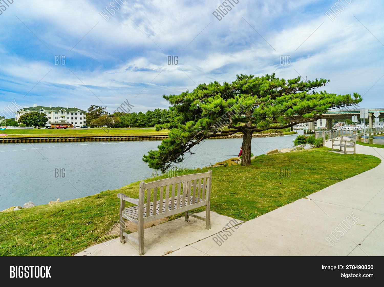 Virginia Beach Image & Photo (Free Trial) | Bigstock