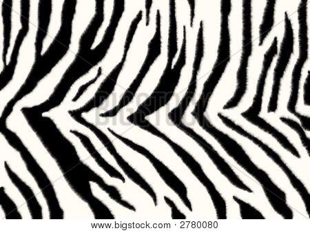 Texture - A Fluffy Skin Of A Zebra