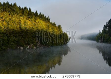 Early Morning Sun Shining On Spruce Trees On A River Bank