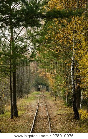 Narrow And Abandoned Rail Tracks In A Rural Area In Autumn