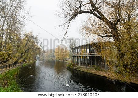 Bydgoscz Canal With Swans In Autumn Lined With Trees Shedding Leaves
