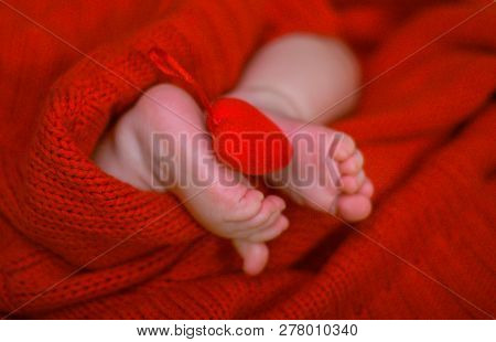 Red Heart On Baby Legs. The Legs Of The Newborn On A Red Background. A Baby Wrapped In A Red Blouse.
