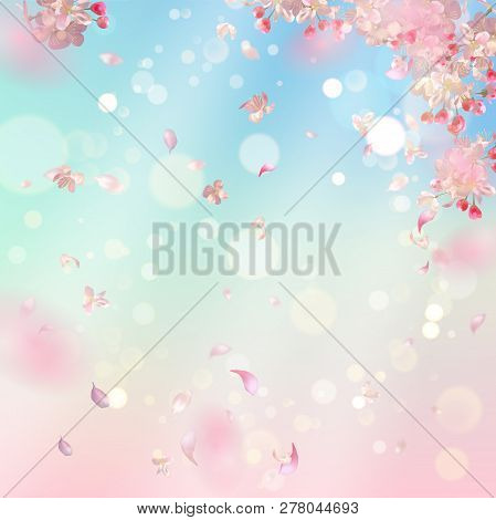Flying Petals On Spring Background. Flowers And Petals In The Wind. Vector Background With Plum Or C