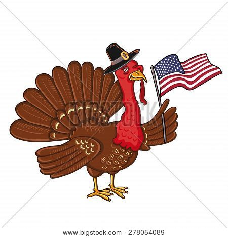 Turkey With Flag Of America, Isolated On The White Background