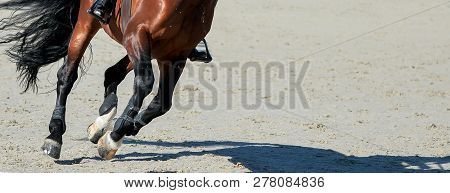 Sorrel Dressage Horse And Rider In Uniform Performing Jump At Show Jumping Competition. Equestrian S