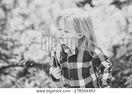 Child Blow Dandelion In Spring Or Summer Park. Boy With Flower On Idyllic Sunny Day. Freedom, Activi
