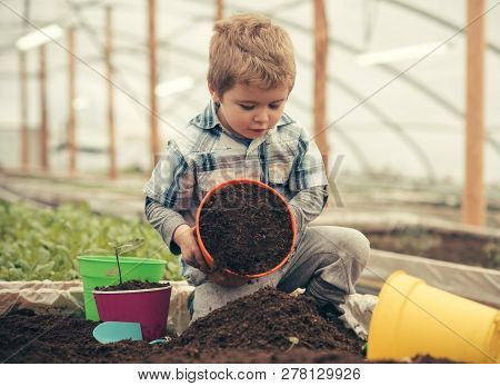 Ecology Care. Ecology Care By Planting Trees And Flowers. Ecology Care Concept. Small Kid Farmer Car