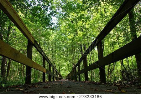 Wood Walking Bridge On A Hike From Natchez Trace Parkway