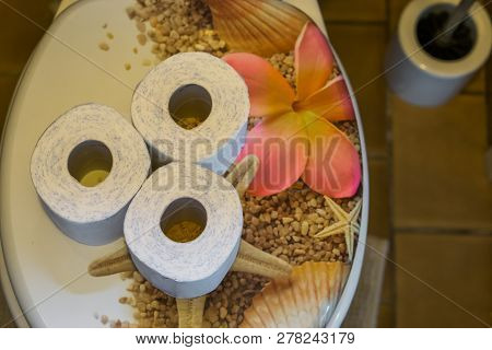 Rolls Of Toilet Paper On The Water Closet Seat, Bathroom Interior, Sanitary Background