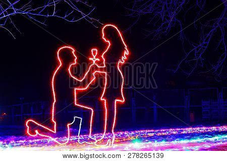 Romantic, Sensual And Tender Outlines Of A Man On His Knees, Who Gives A Girl A Rose And Makes An En