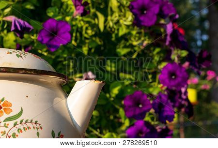 Purple Flowers With A Tea Pot Spout In The Foreground And Leaves