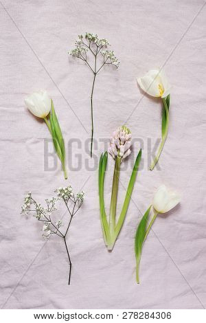 Spring, Easter Floral Botanical Composition. White Gypsophila, Tulips And Hyacinth Flowers Lying On