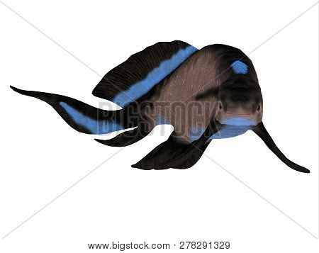 Scaumenacia Fish 3d Illustration - Scaumenacia Was A Primitive Jawless Fish That Lived In The Oceans