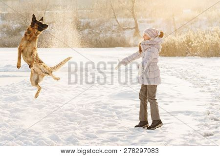 Cute Girl And German Shepherd For Walk. Sunny Winter Day. Girl Throws Snow Up. Funny Dog In Jump.