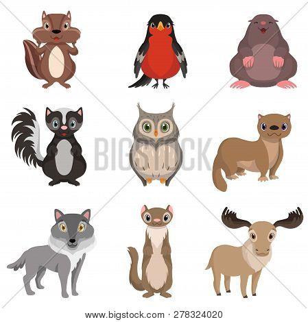 Cute Forest Animals And Birds Set, Chipmunk, Bullfinch, Mole, Cheerful, Owl, Polecat, Raccoon, Deer,