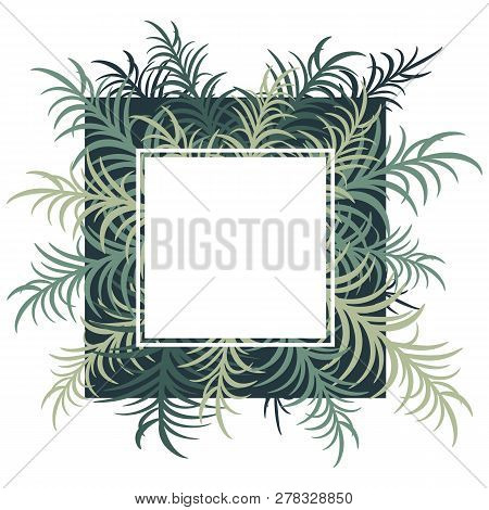 Botanical Card With Palm Leaves. Vector Image. Eps 10