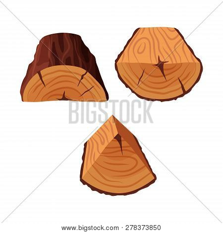 Cartoon Tree Triangle Vector Photo Free Trial Bigstock Download 9,436 tree log stock illustrations, vectors & clipart for free or amazingly low rates! big stock photo