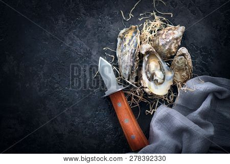 Fresh Oysters close-up with knife, served table with open oysters. Healthy sea food. Oyster dinner in restaurant. Gourmet food. Dark background.