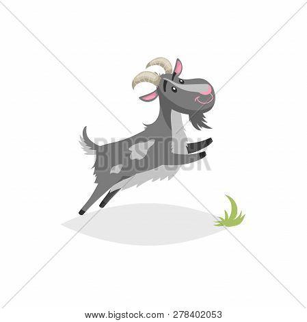 Cute Funny Goat. Cartoon Flat Style Trendy Design Farm Domestic Animal. Spotty Grey Breeded Goat Jum