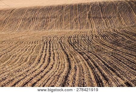 Plowed Field On A Hillside. Selective Focus.