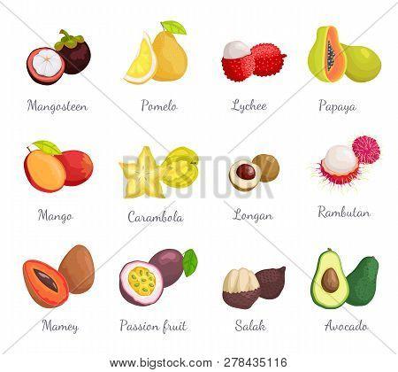 Mangosteen Pomelo Exotic Tropical Fruits Set Vector. Pitaya And Carambola, Salak And Mamey, Passion