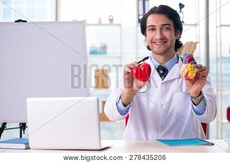 Young handsome doctor cardiologist in front of whiteboard
