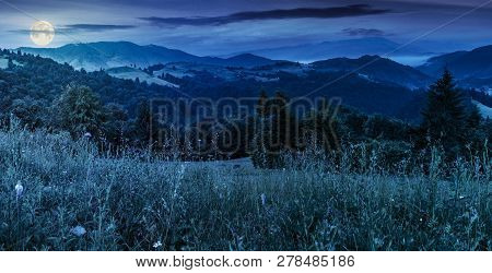 Panorama Of A Beautiful Grassy Meadow In Mountains At Night In Full Moon Light. Spruce Forest On A H