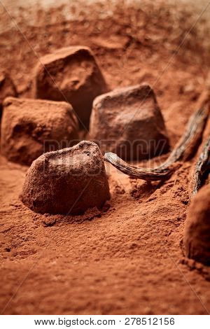 Delicious Gourmet Handmade Chocolates
