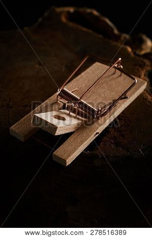 Wooden Spring Type Mouse Trap On Black