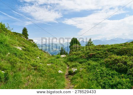 Idyllic hiking trail in the French Alps in summer