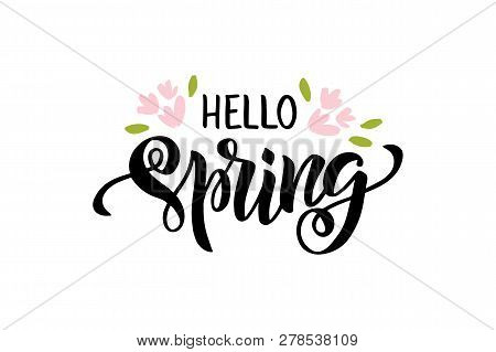Hello Spring - Hand Drawn Brush Lettering. Spring Season Advertising. Template With Pink Flowers And