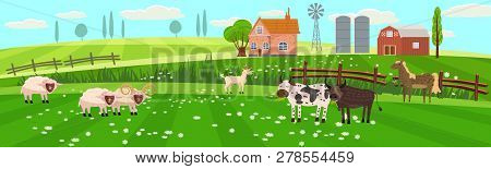 Rural Spring Landscape Countryside With Farm Field With Green Grass, Flowers, Trees. Farmland With H