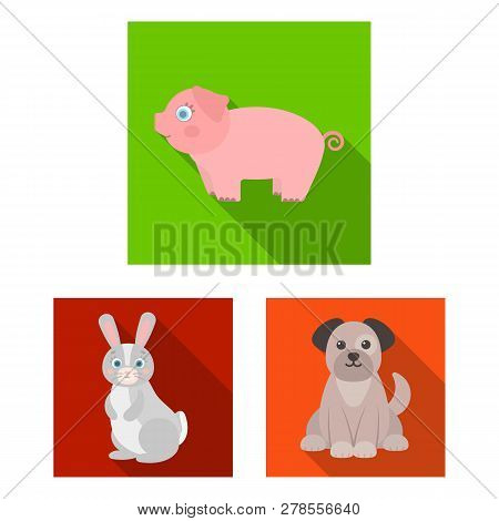 Isolated Object Of Animal And Habitat Symbol. Collection Of Animal And Farm Stock Symbol For Web.