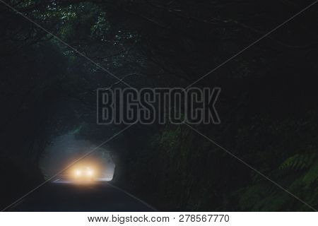Car Light In Misty Forest In Anaga Mountains On Tenerife.