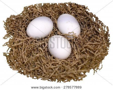 three white chicken eggs lie on straw, in a nest, transparent background, png poster