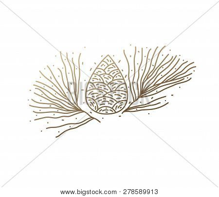 Pine-tree Logo. Abstract Icon Pine Needle In Linear Style. Vector Simple Emblem For Design Of Natura